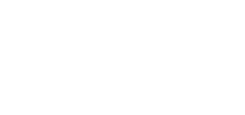 primary match connection icon